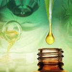 L'huile de CBD et ses bienfaits pour le corps