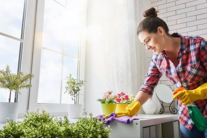 Les métiers de l'entretien à domicile avec plus belle la vitre
