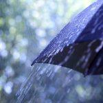 Choisir son parapluie pour homme